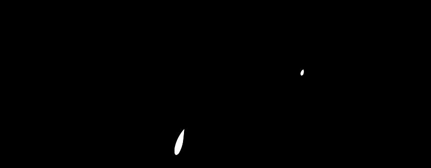 sweetyspicy-logo